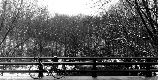 Winter wonderland? Meet morning ride last year